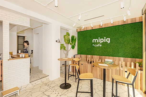 mipig cafe MICRO PIG HOUSE